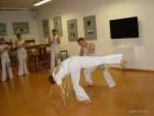 Predstavitev capoeira