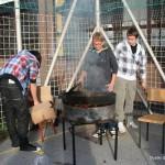 Kostanjev piknik - Dijaški dom Drava Maribor 15