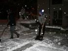 Zimska delovna akcija