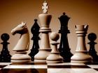 Mednarodni šahovski turnir