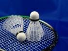 Tekmovanje dvojic v badmintonu