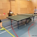 Regijsko prvenstvo v namiznem tenisu- Dijaški dom Drava 17