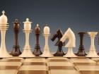 Medregijsko tekmovanje v šahu