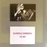 Razstava dijaka Gjorgjija Shemova