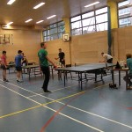 Regijsko tekmovanje v namiznem tenisu 2016-071
